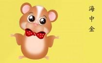 1984年属鼠是什么命