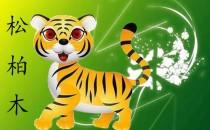 2010年属虎是什么命