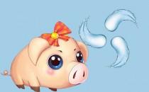属猪的五行属什么