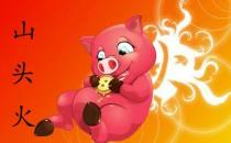 1995年属猪是什么命