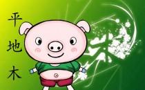 1959年属猪是什么命
