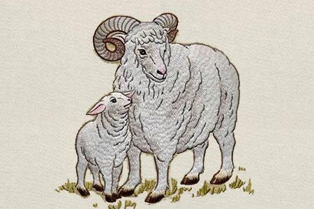 生肖羊百科