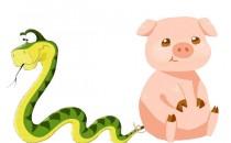 生肖蛇和什么生肖相冲