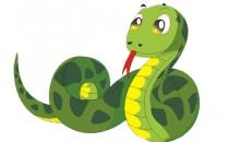 属蛇人性格怎么样