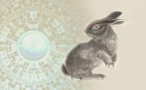 属兔人需注意的风水禁忌