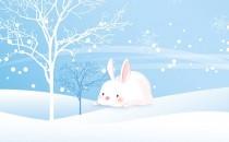十月、十一月、十二月冬天生属兔人的财运