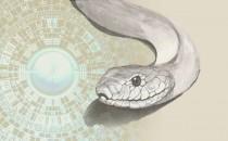 属蛇人需注意的风水禁忌