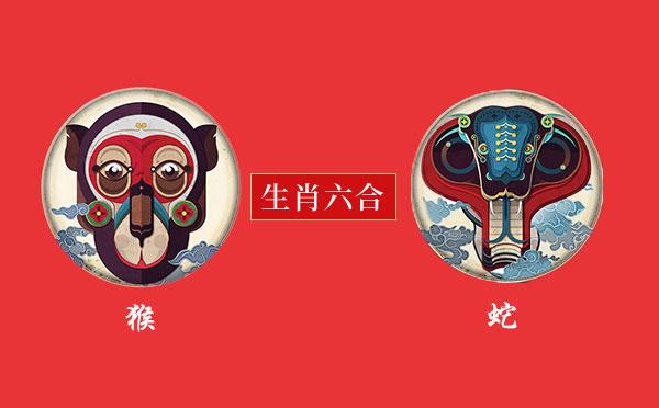 猴和蛇.jpg