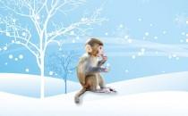 十月、十一月、十二月冬天生属猴人的财运