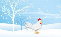 十月、十一月、十二月冬天生属鸡人的财运