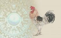 属鸡人需注意的风水禁忌