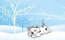 十月、十一月、十二月冬天生属狗人的财运