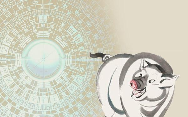 风水猪.jpg