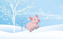 十月、十一月、十二月冬天生属猪人的财运